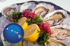 hawaii map icon and raw bar oysters