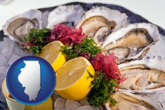 illinois map icon and raw bar oysters
