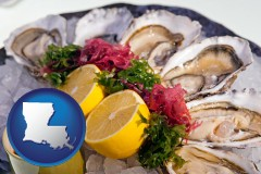 louisiana map icon and raw bar oysters