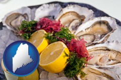 maine map icon and raw bar oysters