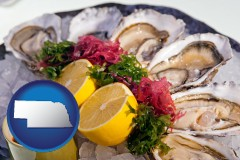 nebraska map icon and raw bar oysters