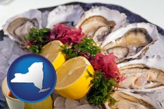 new-york map icon and raw bar oysters