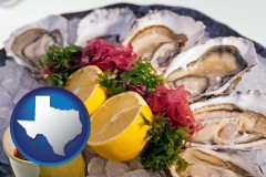 texas map icon and raw bar oysters